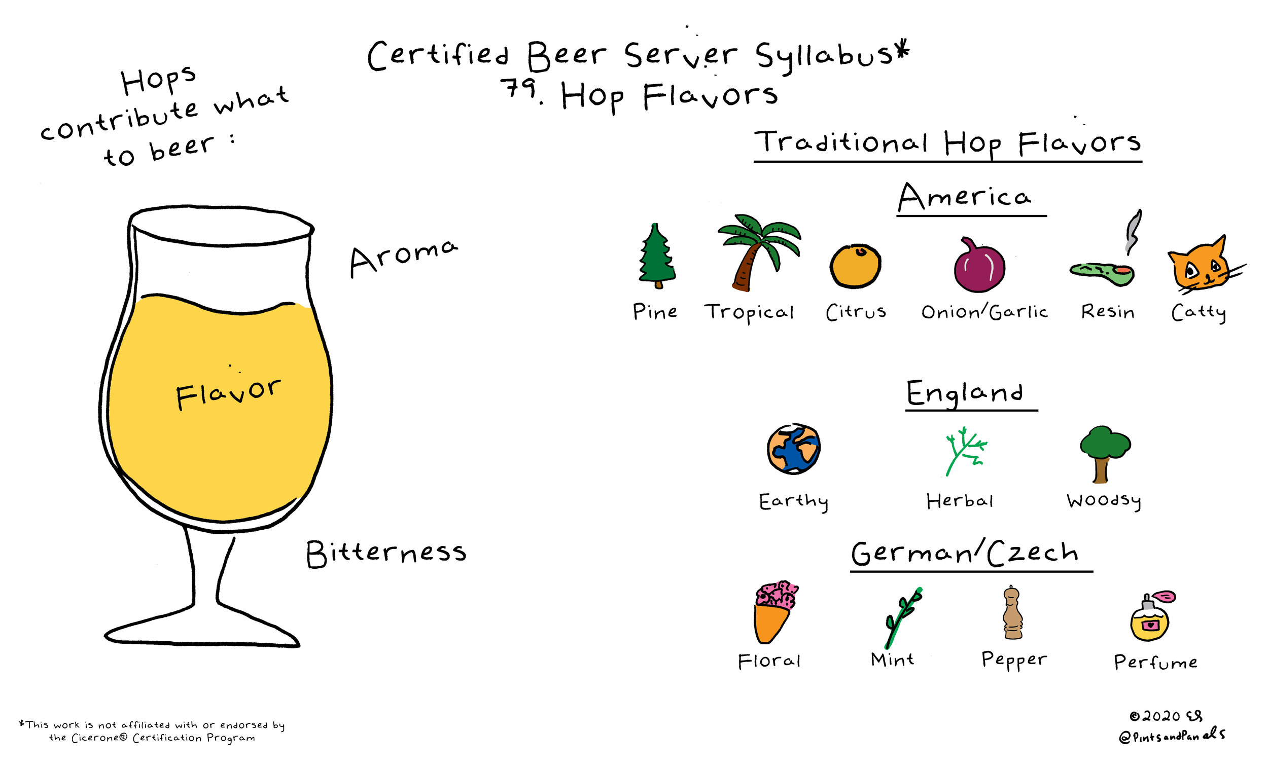 Hops aroma and flavor in beer