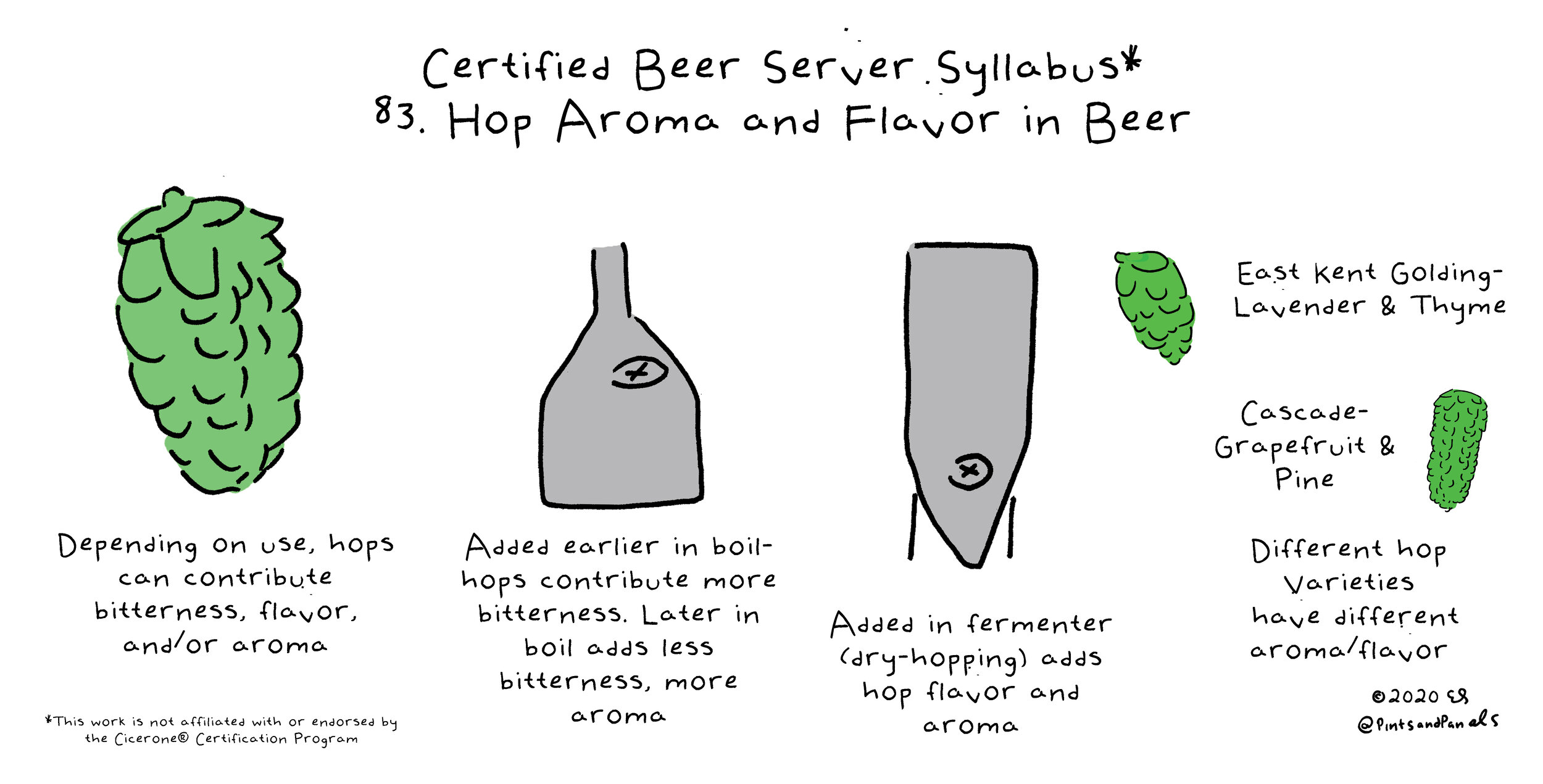 hops added to beer by Pints and Panels